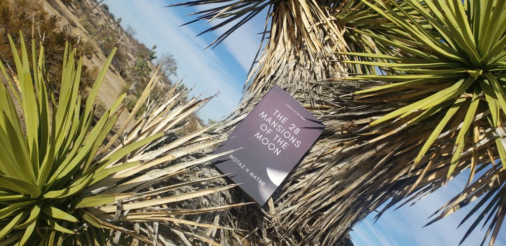 The 28 Mansions of the Moon book cover on a Joshua Tree.