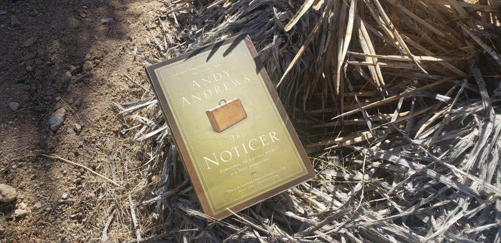 The Noticer cover on a desert background, a book filled with help with our life choices.