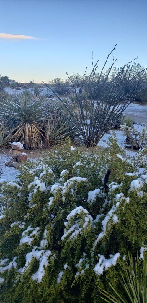Desert snow.