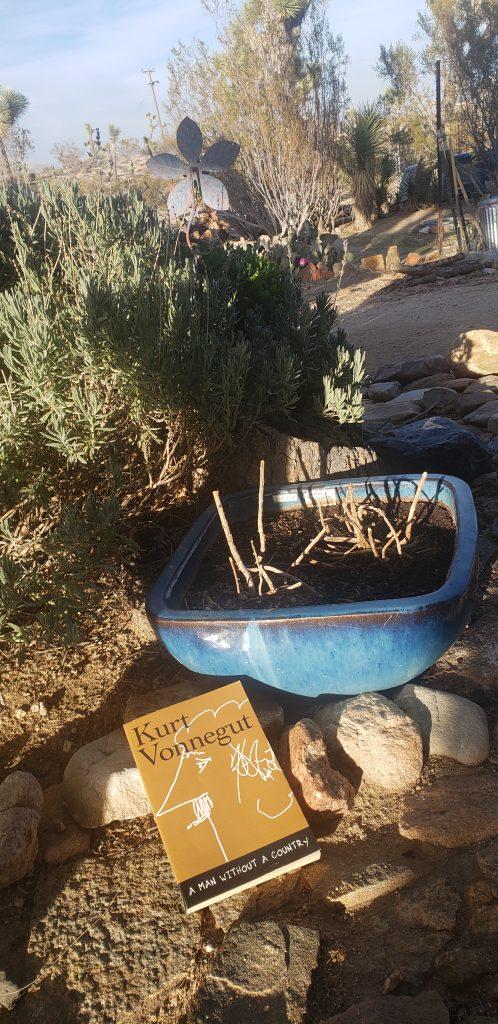 Kurt Vonnegut book cover on a desert planter background.