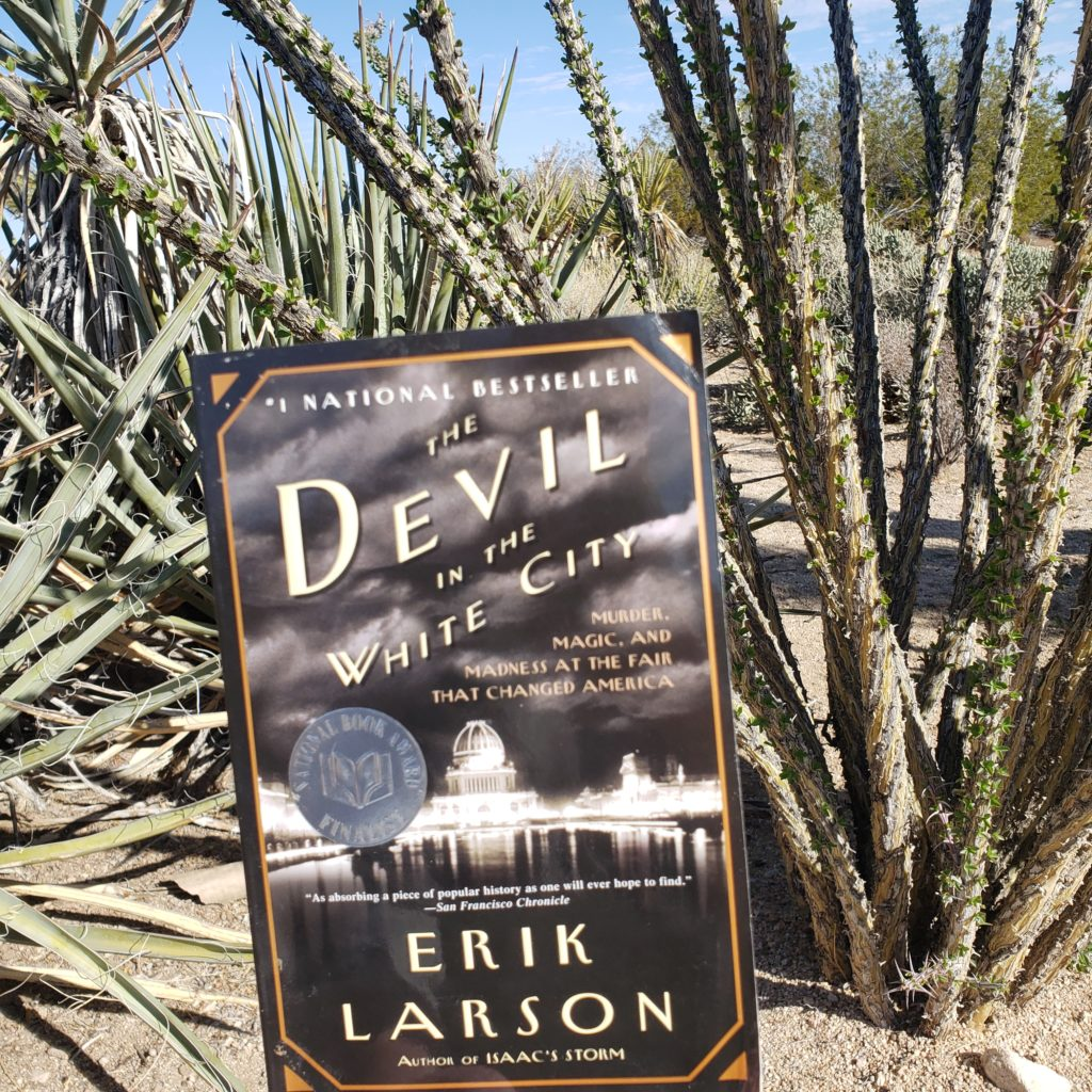 The Devil in the White City book cover on a desert background.